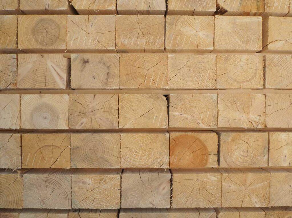 controllo legno pallet
